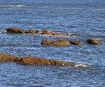 Ecueils sur le rivage sud-américain.